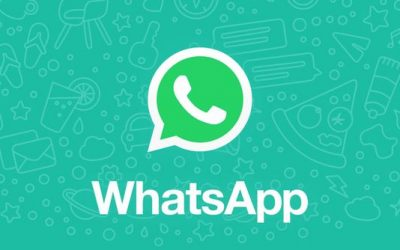 4 reasons you should include WhatsApp business in your marketing strategy