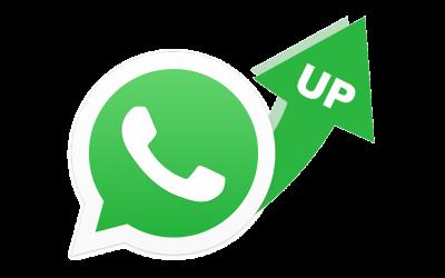 【WhatsApp Business API 教學】如何提升模板消息發送量?